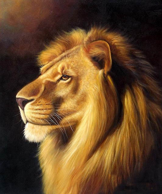 Animals oil painting code ycj007 for Animal oil paintings